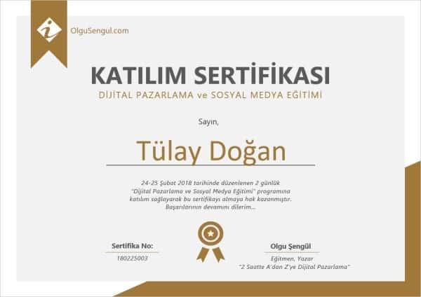 Dijital Pazarlama ve Sosyal Medya Egitimi Sertifikası